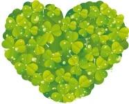 Naturkomsetik & Bio Lebensmittel günstig bestellen