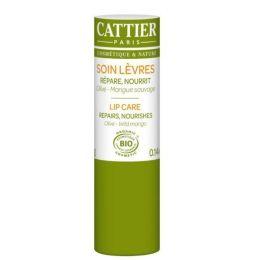 Lippenpflege Bio-Olivenöl und Bio-Mango