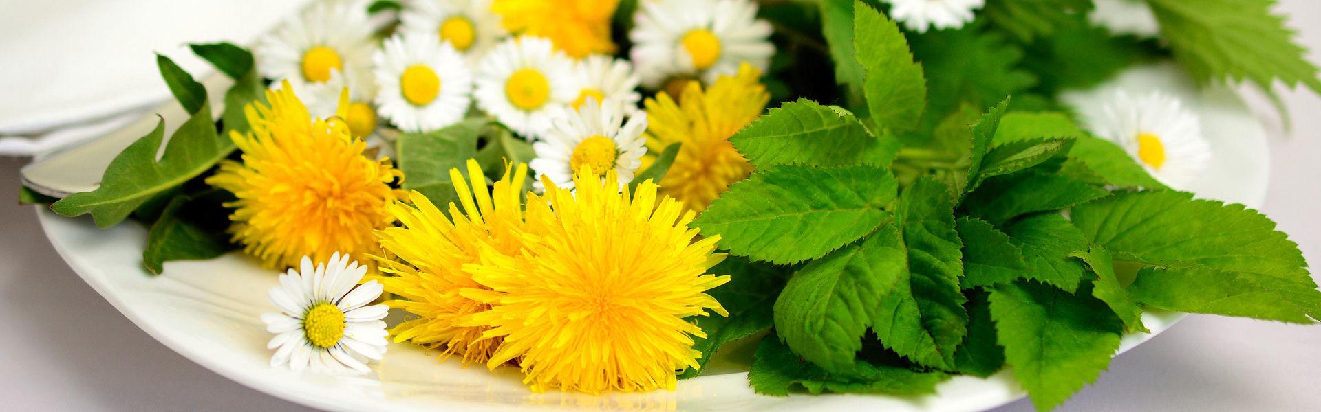 Wiesenblumen auf Teller
